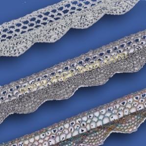 Cotton lace 859 Metallic