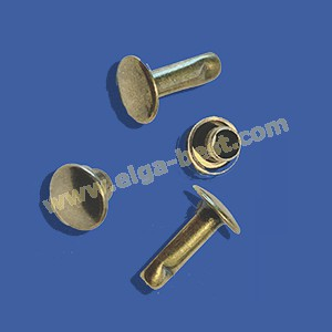 Rivets with tooling 10mm
